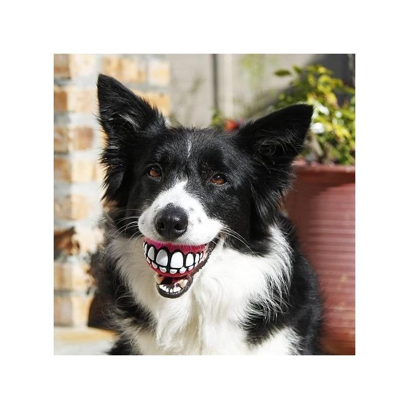 Pelota con dientes Rogz Dogz Large