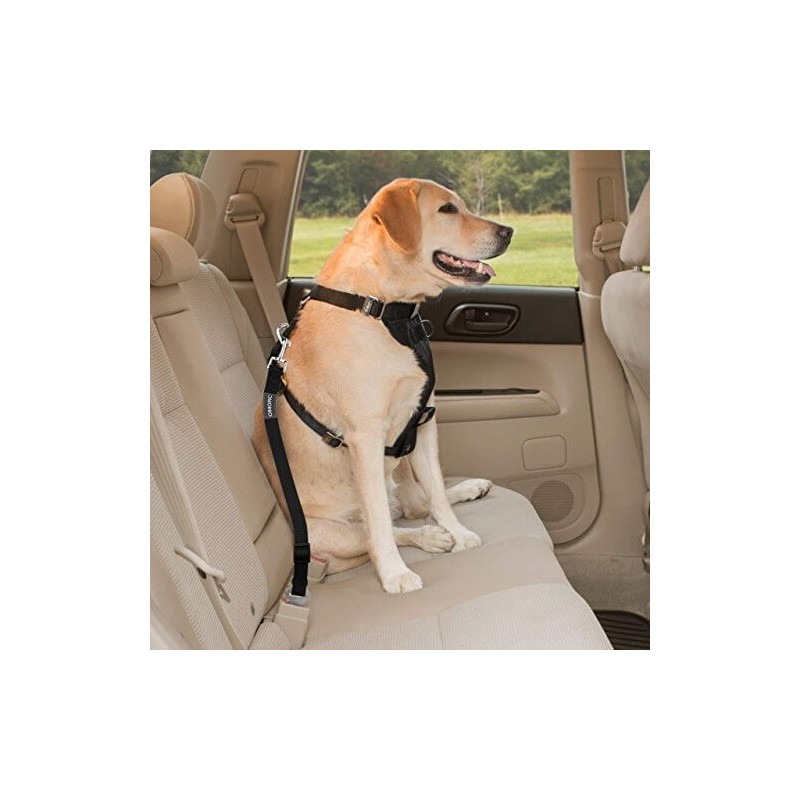 Cinturon de seguridad para Auto