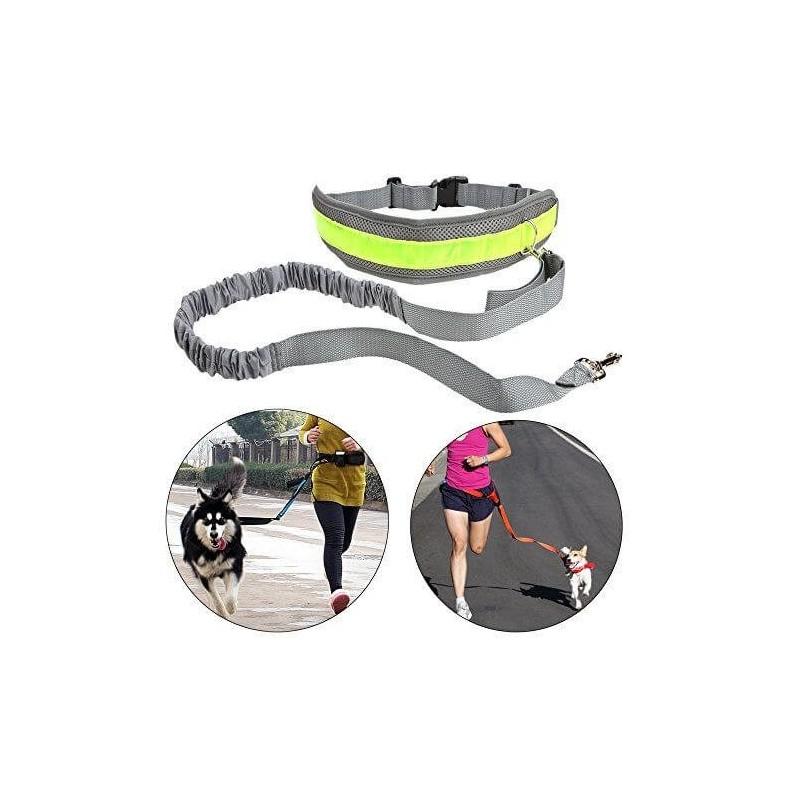 Kit de running para perros