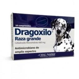 Dragoxilo 660mg Raza Grande Medicamentos