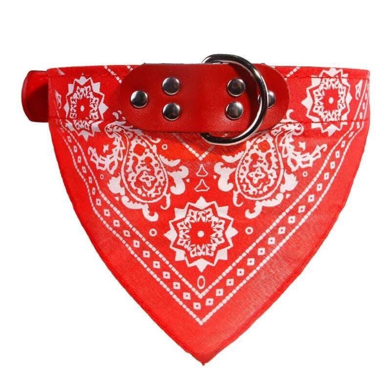 Collar Bandana