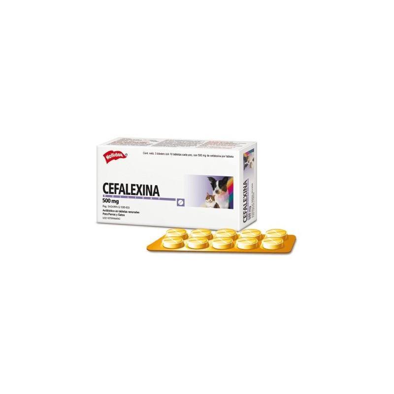 Cefalexina 500mg Comprimidos