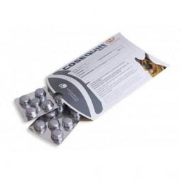 Cosequin Taste HA - 10 Comprimidos Medicamentos