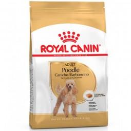 Royal Canin Poodle Adulto 2,5kg ALIMENTO PARA PERROS