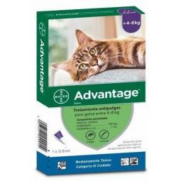 Advantage Gatos entre 4-8Kg Antiparasitarios