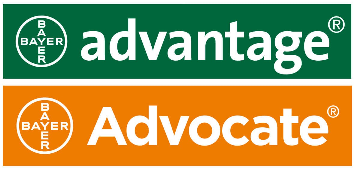 Advantage / Advocate